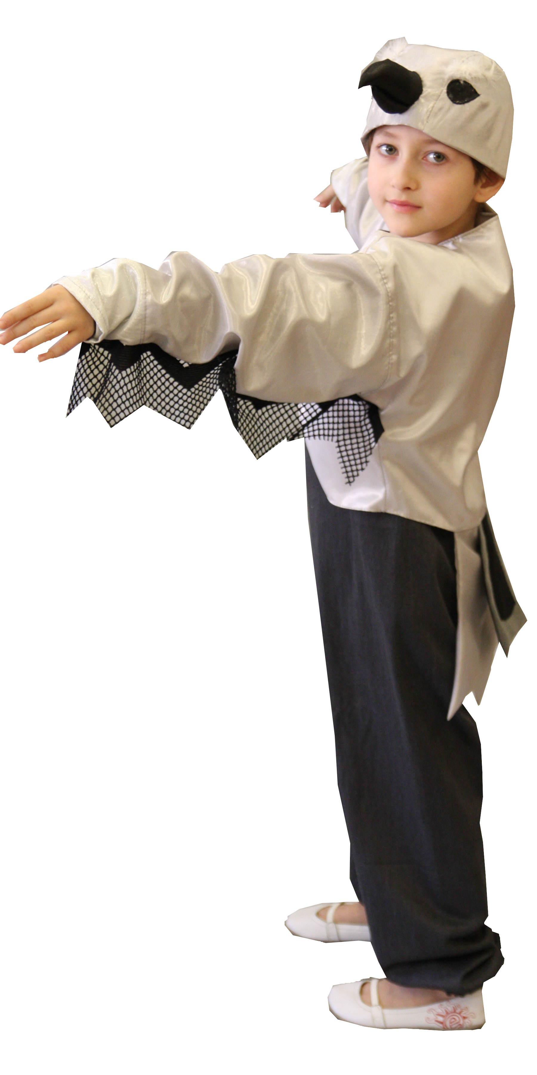 Šarkos kostiumas