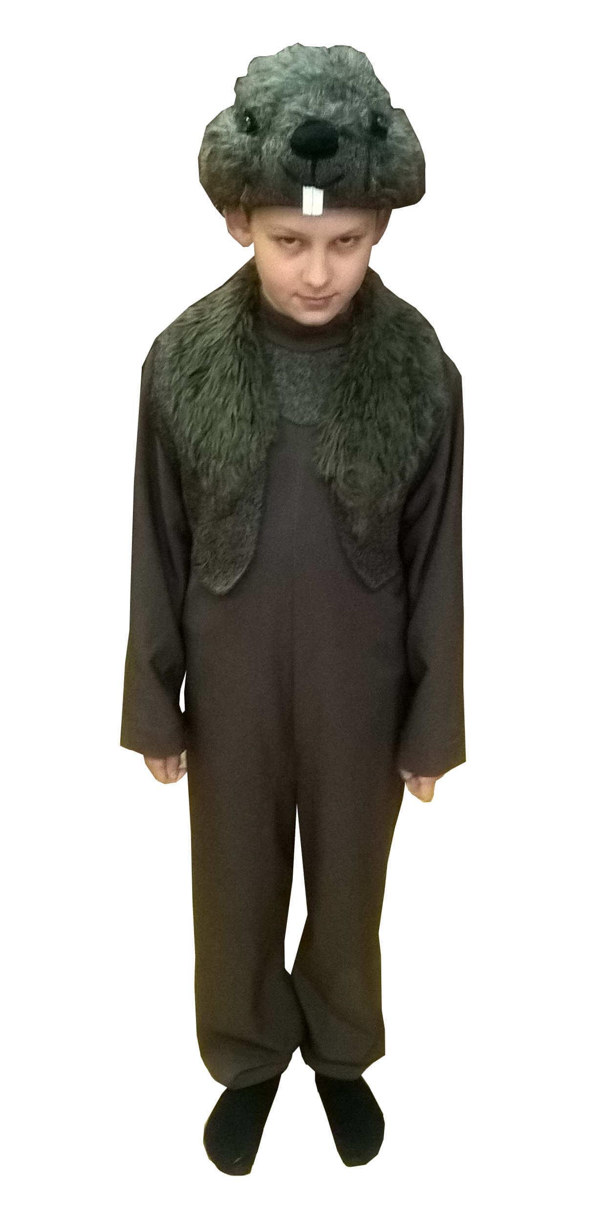 костюм бобра. Bebro kostiumas. Gyvunų karnavaliniai kostiumai. Karnavaliniu kostiumu nuoma vaikams Vilniuje - pasakunamai.lt